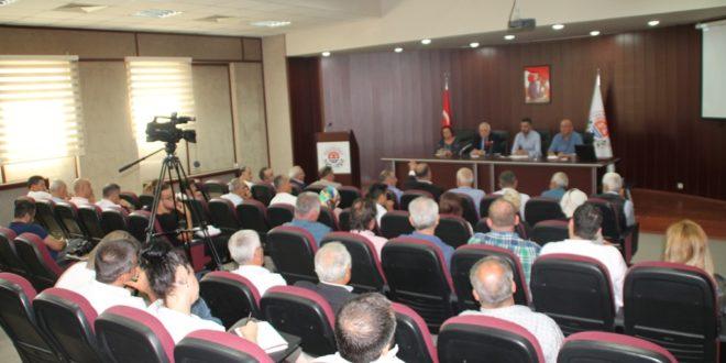 Zeytin Festivali 6 Eylül'de başlıyor