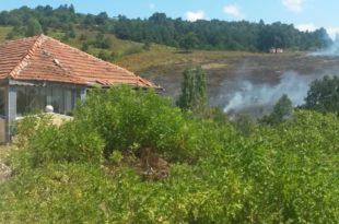 Gemlik'te Yangın Büyük Ormana Ulaşmadan Söndürüldü
