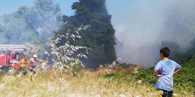 Kumla'da tatilcileri korkutan yangın