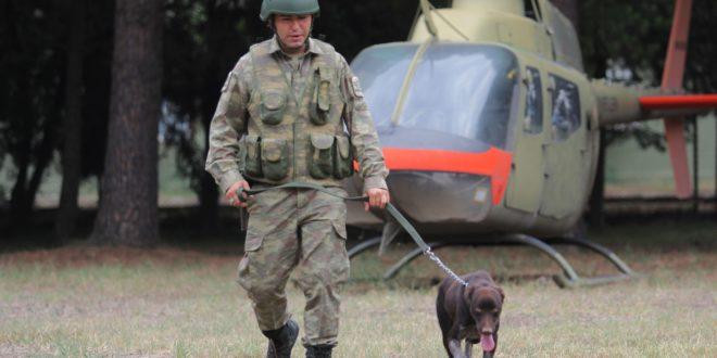 Gemlik'te Sınır ötesi operasyonlara yerli ırk köpek