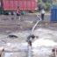 Çevreyi kirletenler zabıtanın radarında