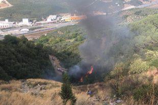 Gemlik Umurbey'de Yangın