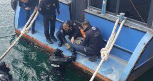 Gemlik'te Denizde mahsur kalan kediye nefes kesen operasyon