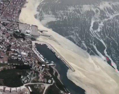 Marmara'da görülen deniz salyasına çare: 'Çatı Operasyonu'