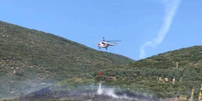 Gemlik'te orman yangını kontrol altına alındı