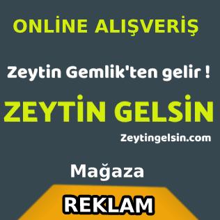 Zeytin online satış ve sipariş sitesi